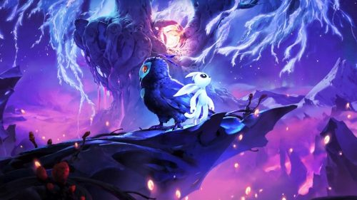 ori and the will of the wisps esports dude